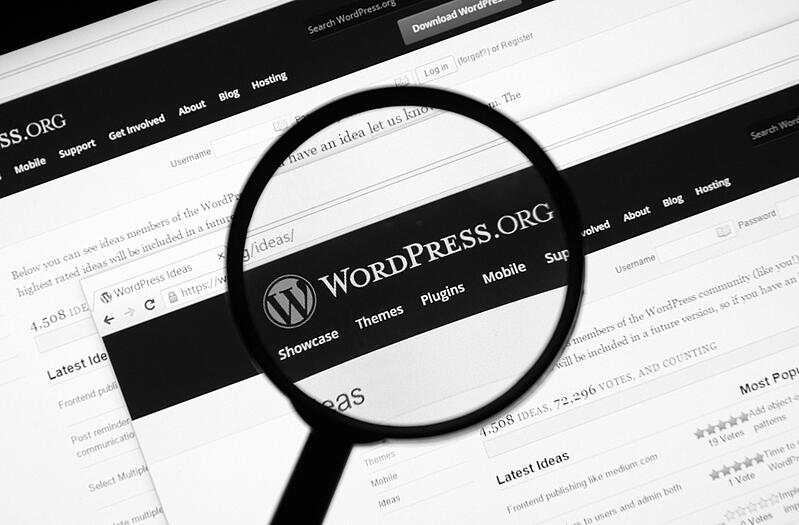 magnifying glass over a website screen for Wordpress.org